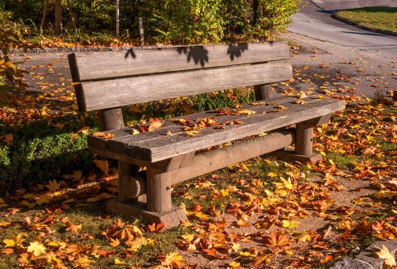 Un banco en un parque del otoño Un banco de madera se derrama con las hojas caidas amarillas foto de archivo