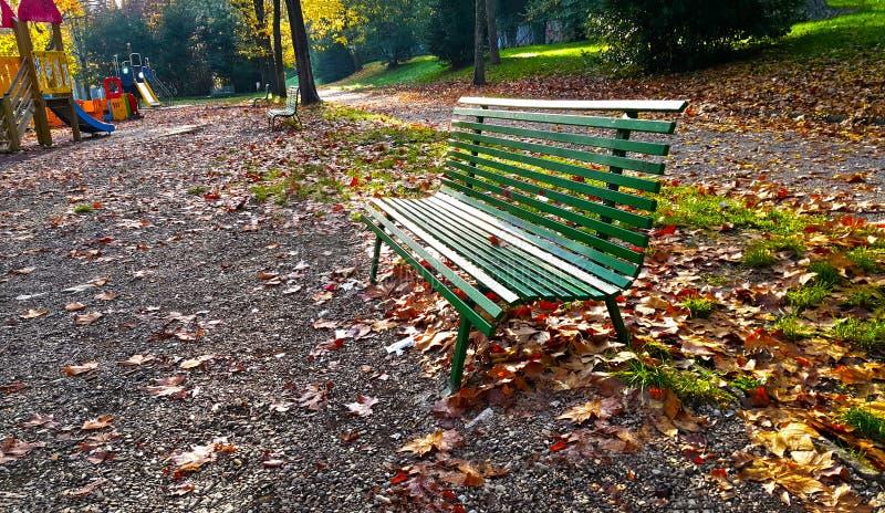 Un banco verde en un parque con las hojas caidas de Florencia en otoño imágenes de archivo libres de regalías