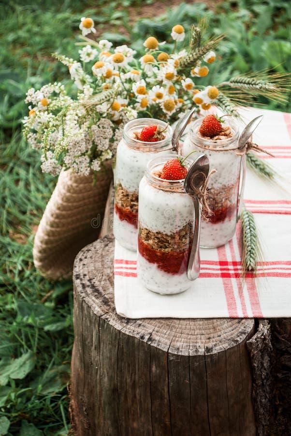 Un barattolo di vetro con un dessert delle fragole, del yogurt con Chia e del granola su un picnic in uno stile rustico fotografia stock libera da diritti