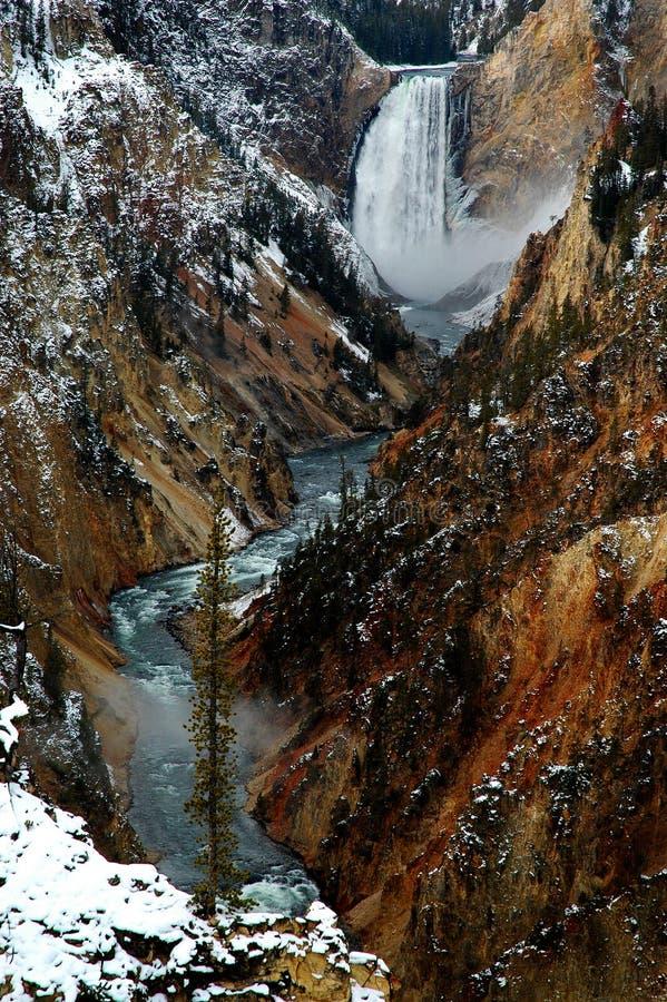 Un barranco más bajo de la garganta de la caída del agua de Yellowstone foto de archivo