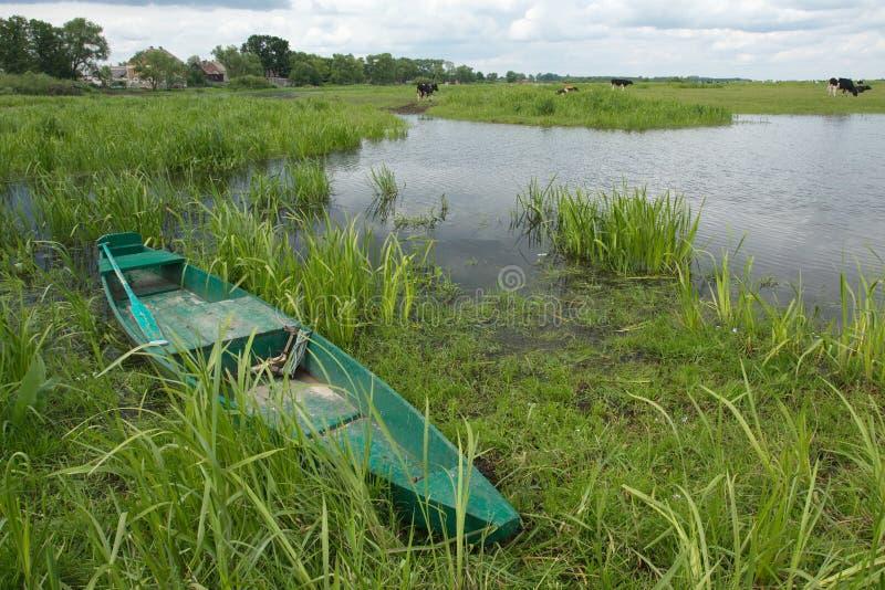 Un bateau vert dans les prés inondés photo stock