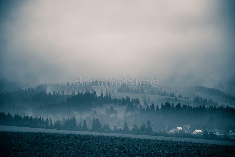 Un beau, abstrait paysage monochrome de montagne dans la tonalité bleue photo stock