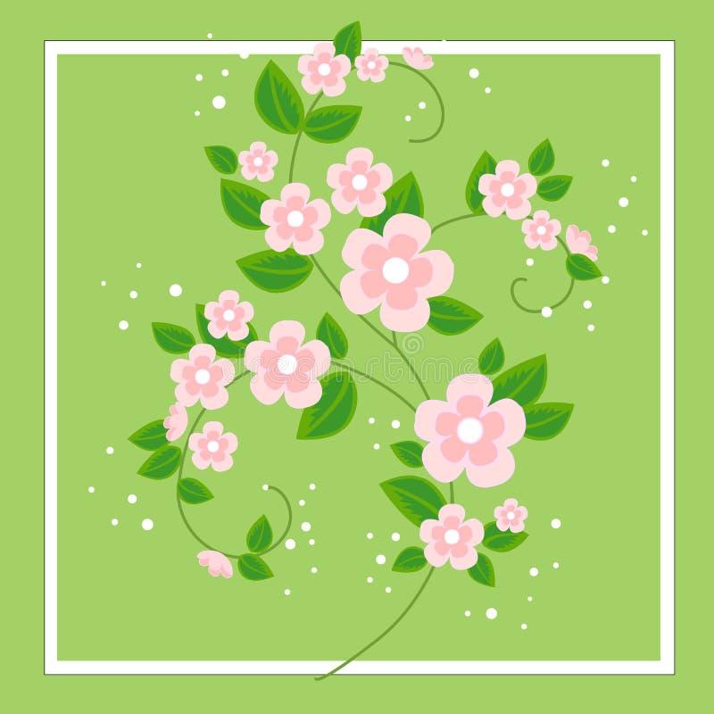 Un beau bouquet pour des félicitations Branches sensibles des fleurs roses Fond de source Illustration de vecteur illustration de vecteur