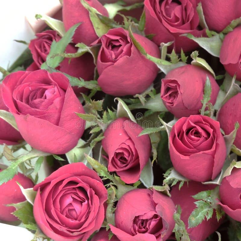 Un beau bouquet rose rouge Tir haut étroit pour valentine' ; fond de jour de s image stock