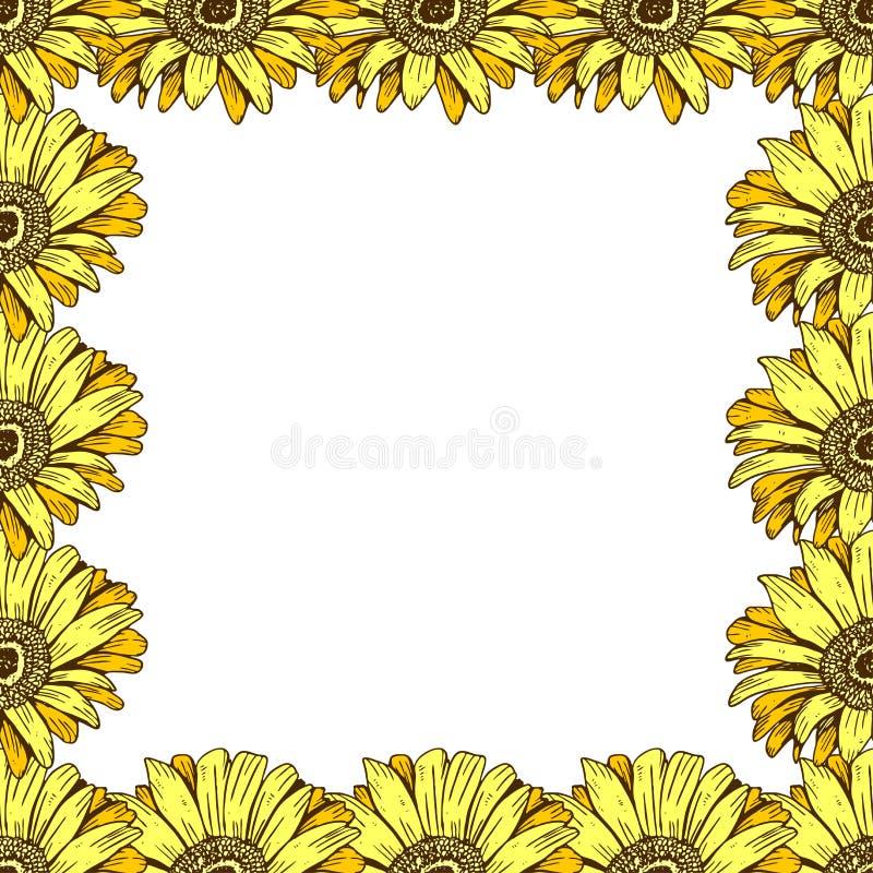 Un beau cadre floral des marguerites jaunes Fleurissez la conception pour des cartes, bannières, affiches et ainsi de suite Illus illustration stock