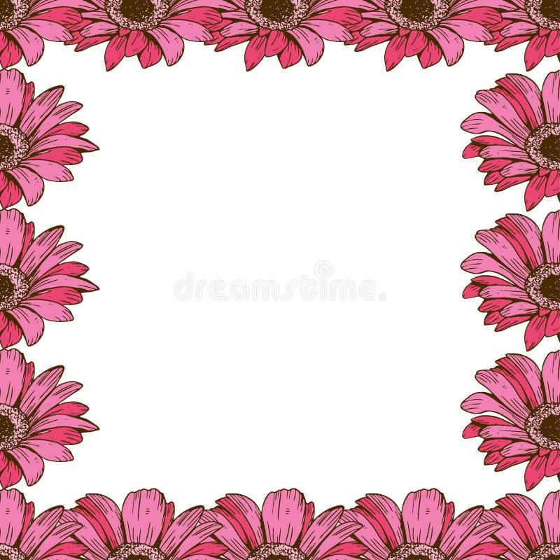 Un beau cadre floral des marguerites roses Fleurissez la conception pour des cartes, bannières, affiches et ainsi de suite Illust illustration stock