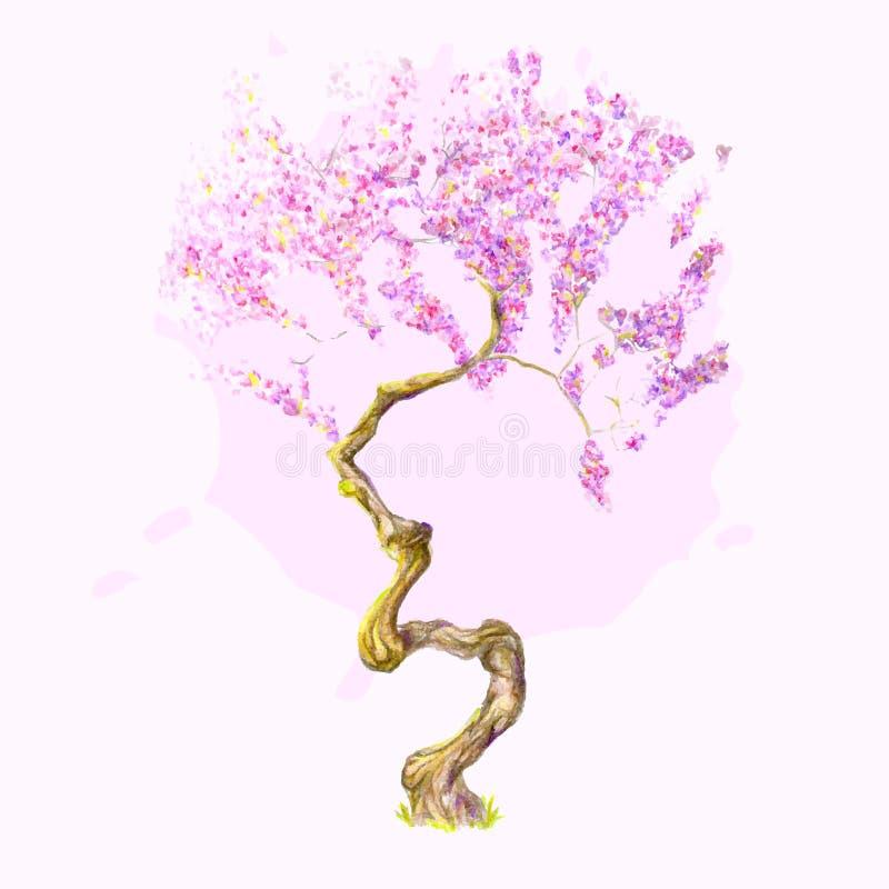 Un beau cerisier d'aquarelle photo stock