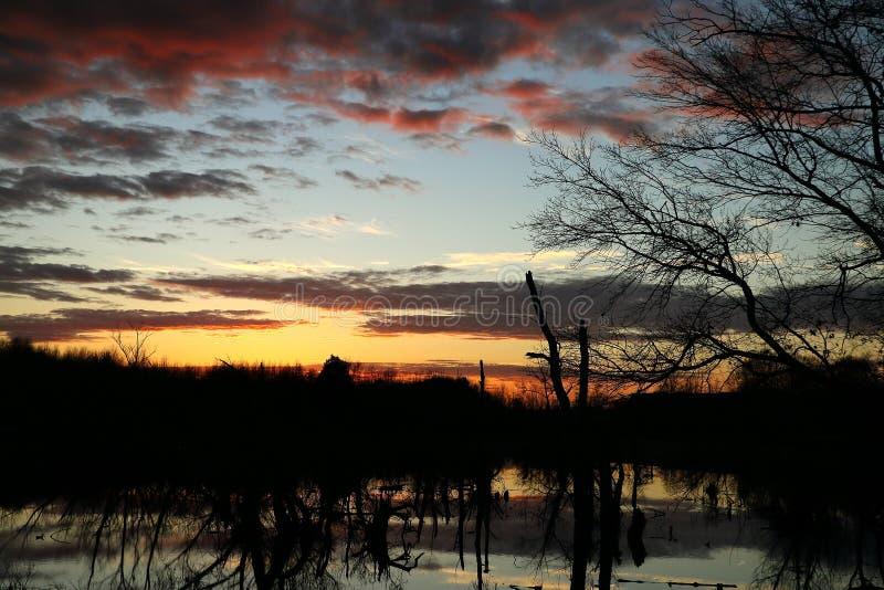 un beau coucher du soleil au-dessus du marais photos stock