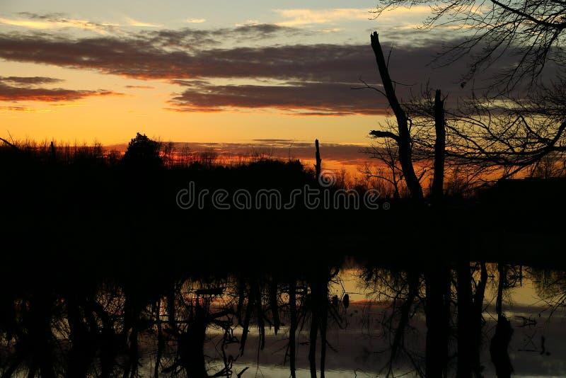 un beau coucher du soleil au-dessus du marais photographie stock libre de droits