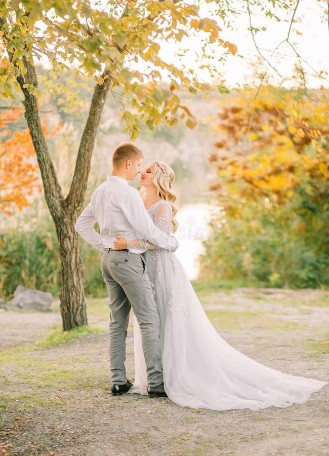 Un beau couple affectueux, les jeunes mariés avant le jour magnifique l'épousant, la fille est habillé dans un long gris photos libres de droits