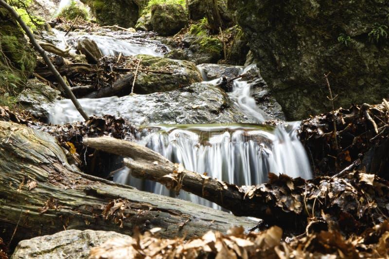 Un beau ruisseau froid en montagnes de la Slovaquie dans le diery de Ãkove de ¡ de noÅ de ¡ de JÃ photo libre de droits