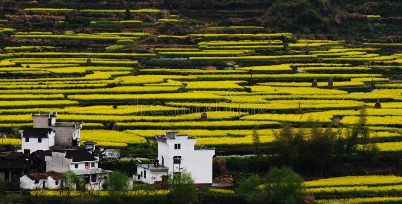 Un beau village juste comme une photo photo stock