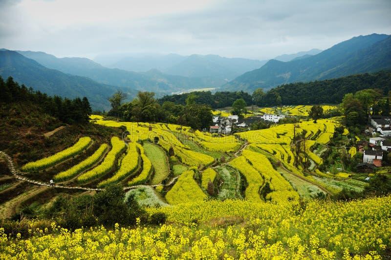 Un beau village juste comme une photo image stock