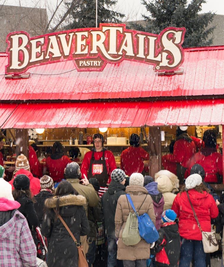 Un Beavertail per favore immagini stock