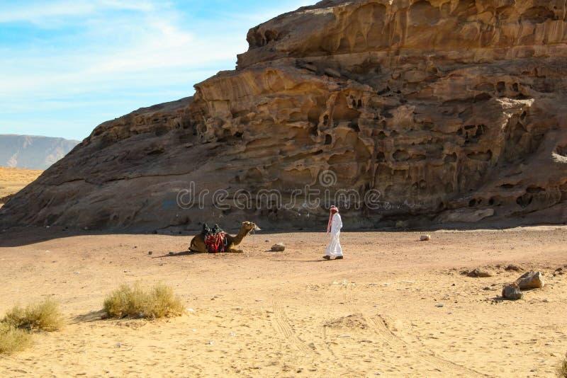 Un beduino nei supporti del deserto con il suo cammello fra il paesaggio del deserto La Giordania, PETRA - 26 dicembre 2009 immagini stock libere da diritti