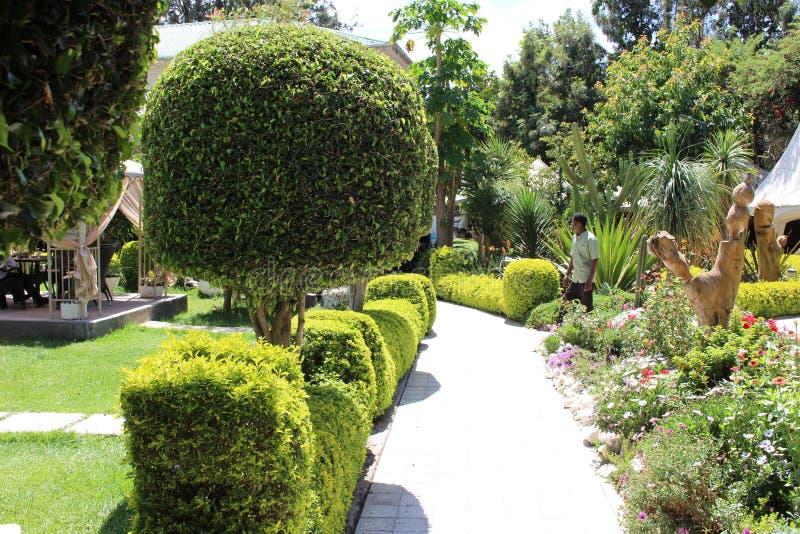 Un bei giardino e scultura in un composto di hotel fotografia stock