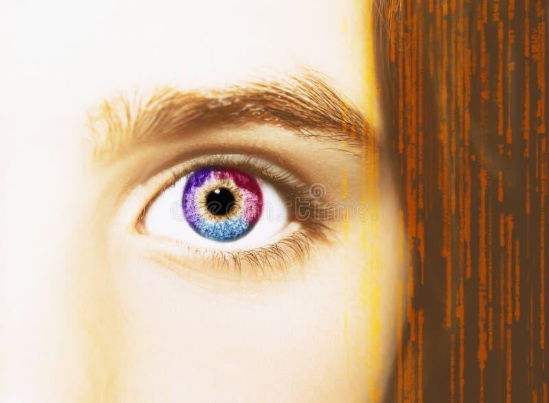 Un bel oeil perspicace de regard Fermez-vous vers le haut du tir photos libres de droits