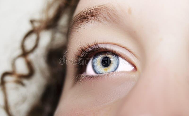 Un bel oeil perspicace de regard Fermez-vous vers le haut du tir photo stock