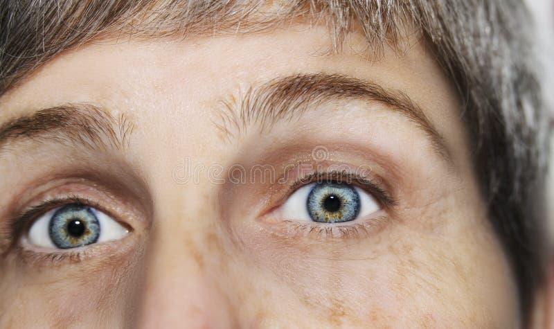 Un bel oeil perspicace de regard Fermez-vous vers le haut du tir L'oeil d'une femme ag?e photographie stock libre de droits