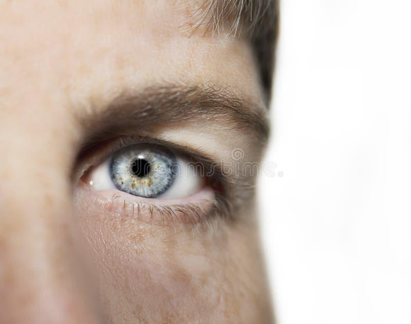 Un bel oeil perspicace de regard Fermez-vous vers le haut du tir L'oeil d'une femme ag?e images stock