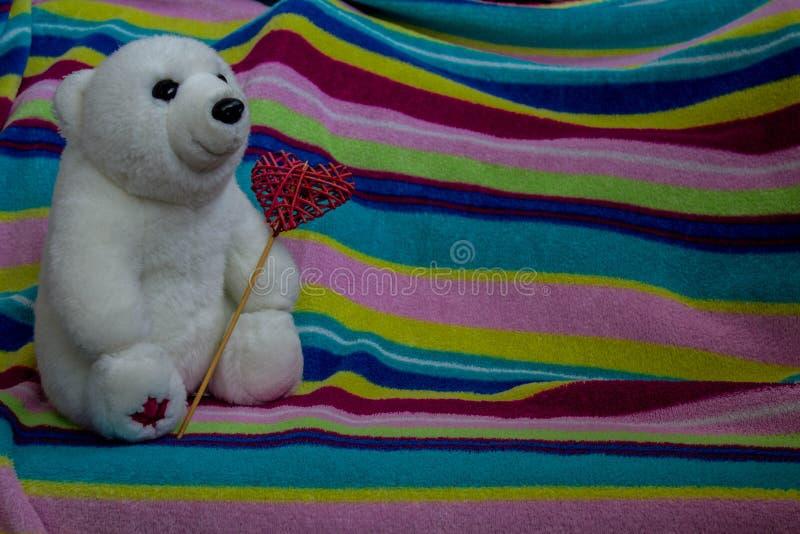 Un bel ours blanc avec le coeur dans la patte images stock