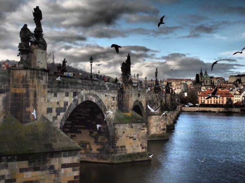 Un bellissimo Charles Bridge una vista di Praga, romantica passeggiata per la notte di Praga lungo il fiume Vltava con colori int immagine stock