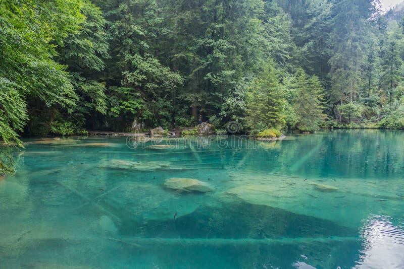 Un bellissimo tour di esplorazione tra le montagne della Svizzera - Blausee/Svizzera immagine stock libera da diritti
