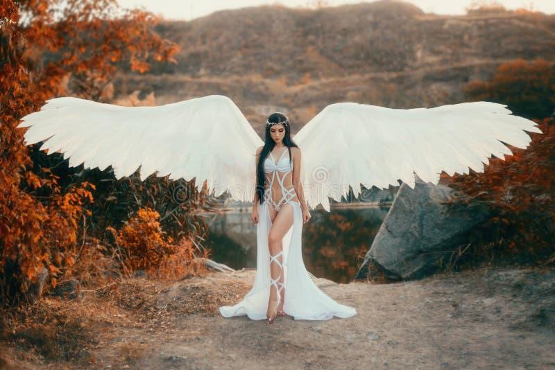 Un bello arcangelo bianco immagine stock