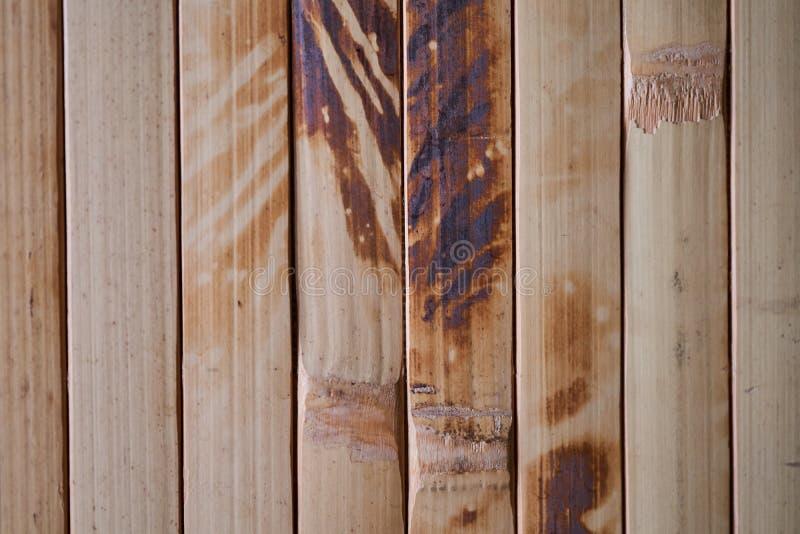 Un bello contesto dei tronchi di bambù naturali fotografia stock