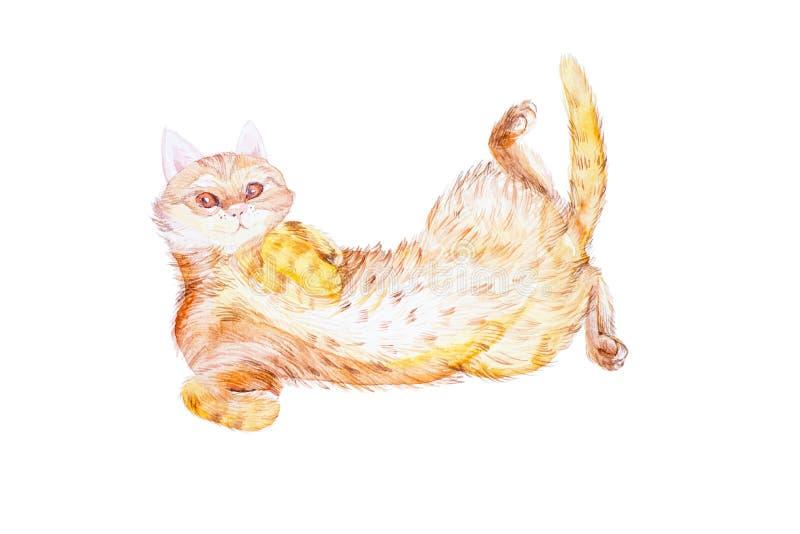 Un bello gatto rosso si trova sul suoi lato e giochi Illustrazione dell'acquerello isolata su fondo bianco illustrazione vettoriale