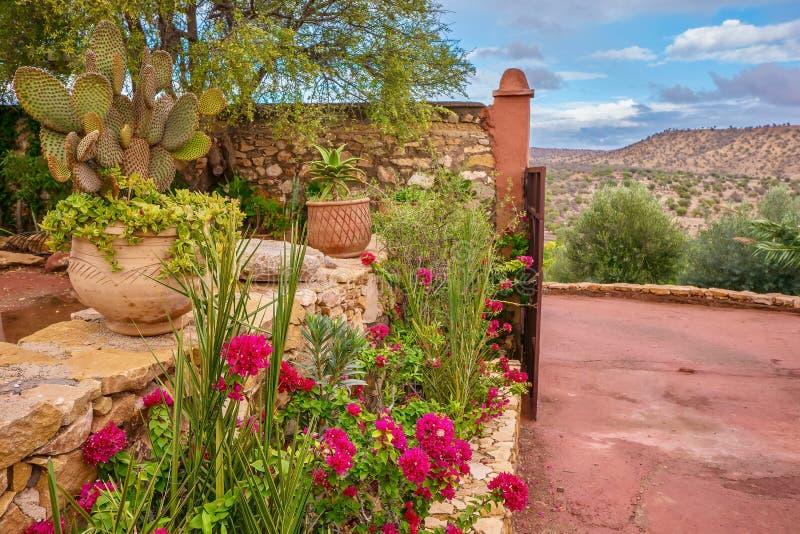 Un bello giardino del deserto nel Marocco fotografia stock libera da diritti