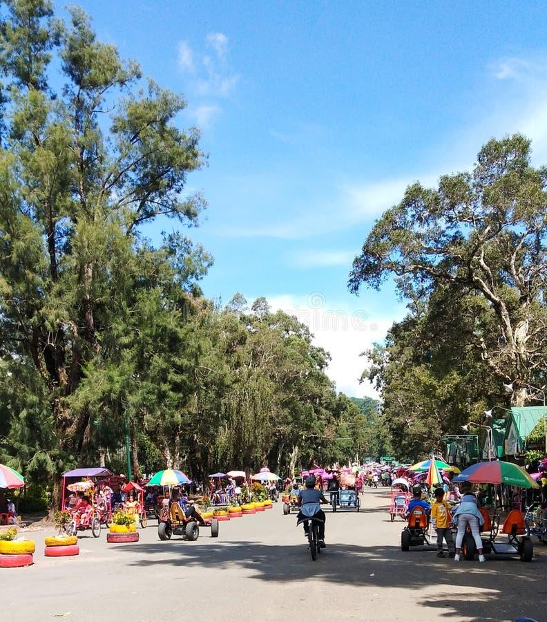 Un bello giorno a Burnham Park in Baguio City Bambini che prendono un giro della bici fotografia stock libera da diritti