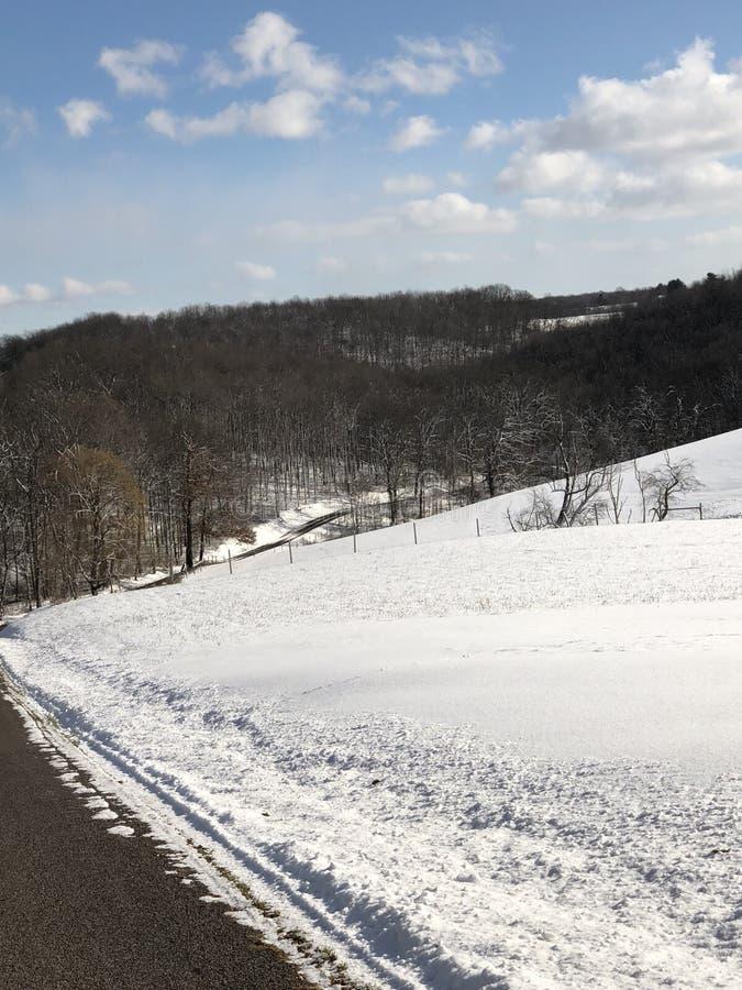Un bello giorno nevoso immagine stock