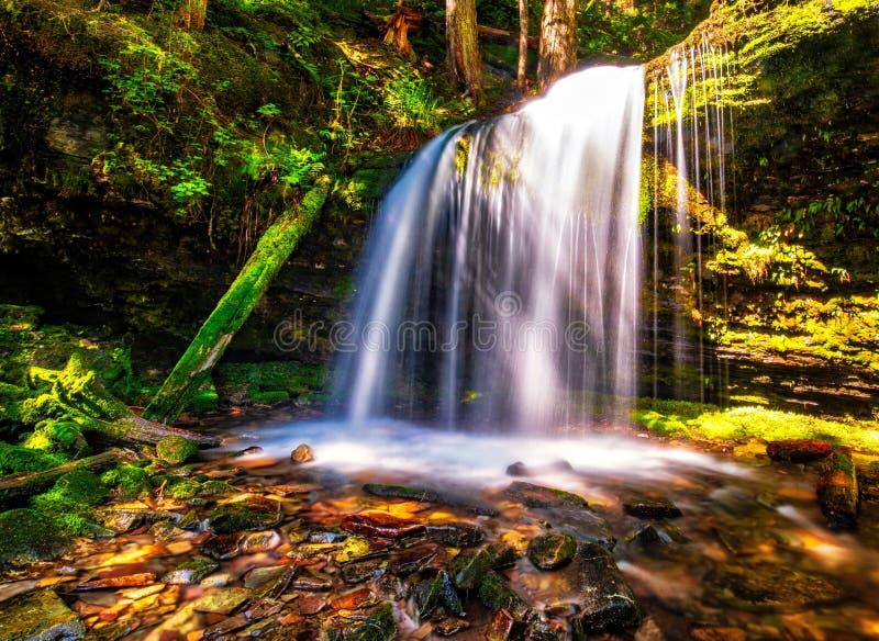 Un bello momento oltre ad una cascata nelle montagne dell'Idaho immagine stock libera da diritti