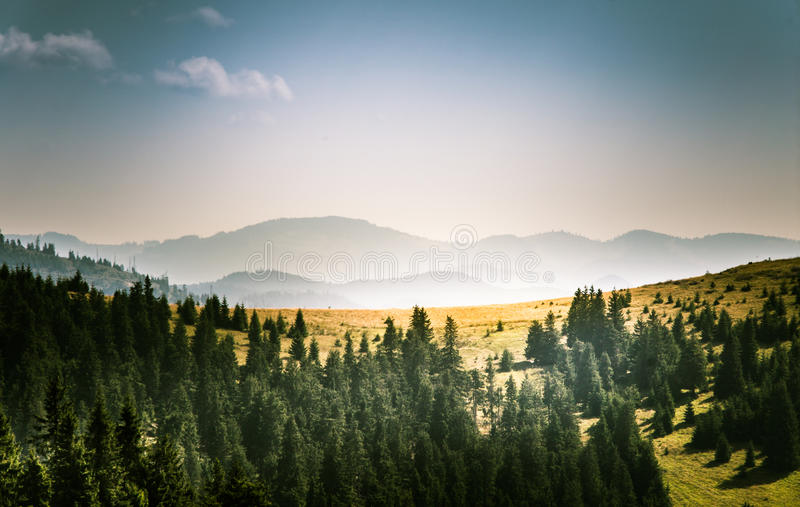Un bello paesaggio carpatico fotografie stock