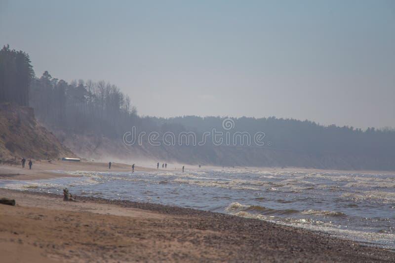 Un bello paesaggio in un giorno ventoso, sabbia di salto della spiaggia del vento fino alle alte scogliere sabbiose Paesaggio del fotografia stock