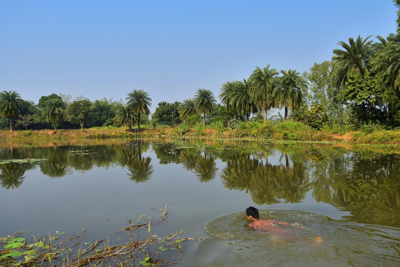 Un bello stagno con una bellezza paesaggistica Un ragazzo che nuota nello stagno immagini stock
