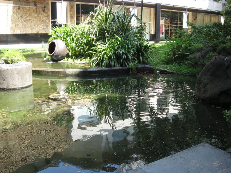 Un bello stagno di pesce al parco della zona verde di Makati, città di Makati fotografia stock libera da diritti