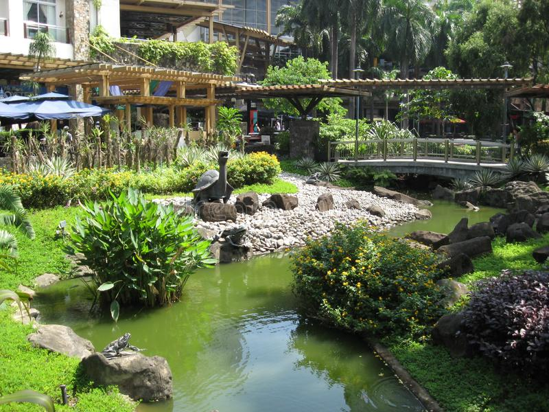 Un bello stagno di pesce al parco della zona verde di Makati, citt? di Makati fotografie stock libere da diritti