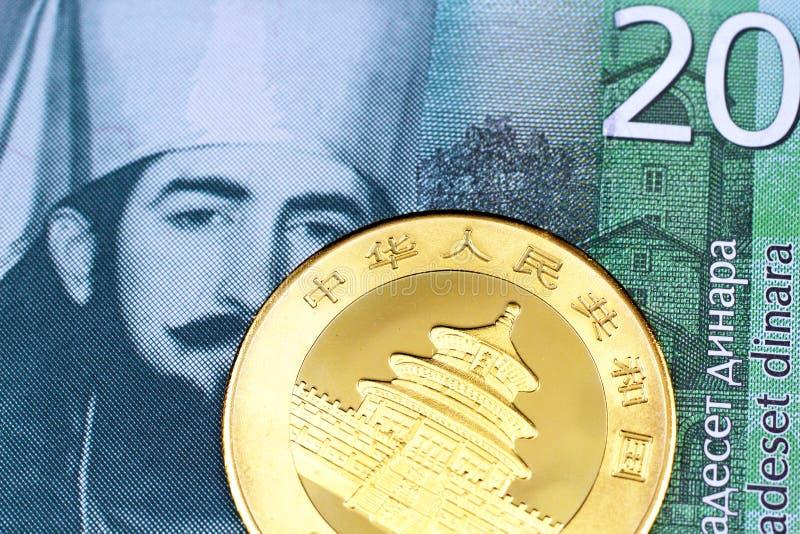 Un billete de banco servio del dinar veinte con una moneda china de la panda del oro foto de archivo libre de regalías