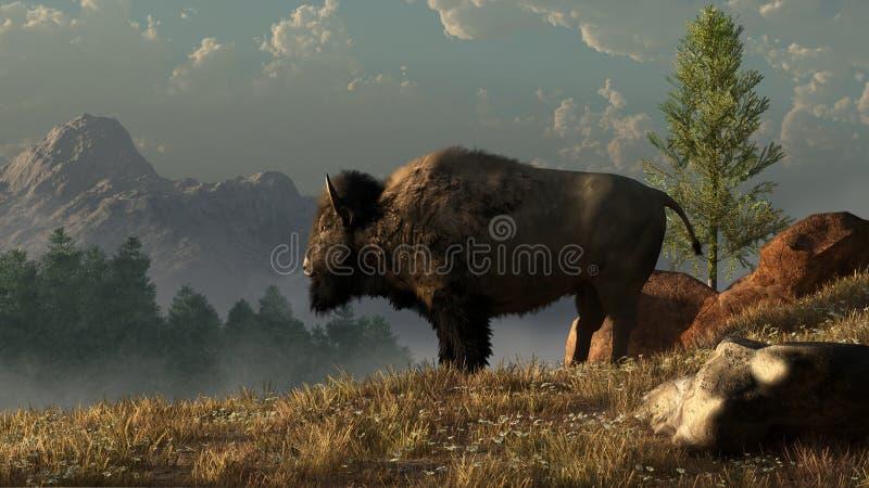 Un bisonte americano stock de ilustración