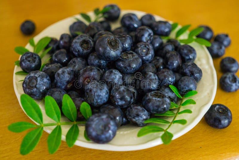 Un bleuet de jardin coulé dans une soucoupe sur une table photos stock