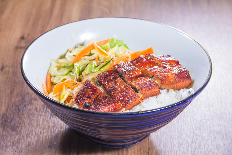 Un bol de riz avec de la viande photographie stock libre de droits