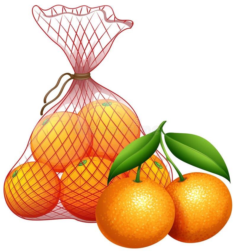 Un bolso de la mandarina ilustración del vector