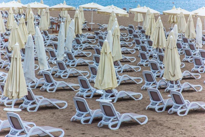 Un bon nombre de canapés du soleil sur la plage photo libre de droits