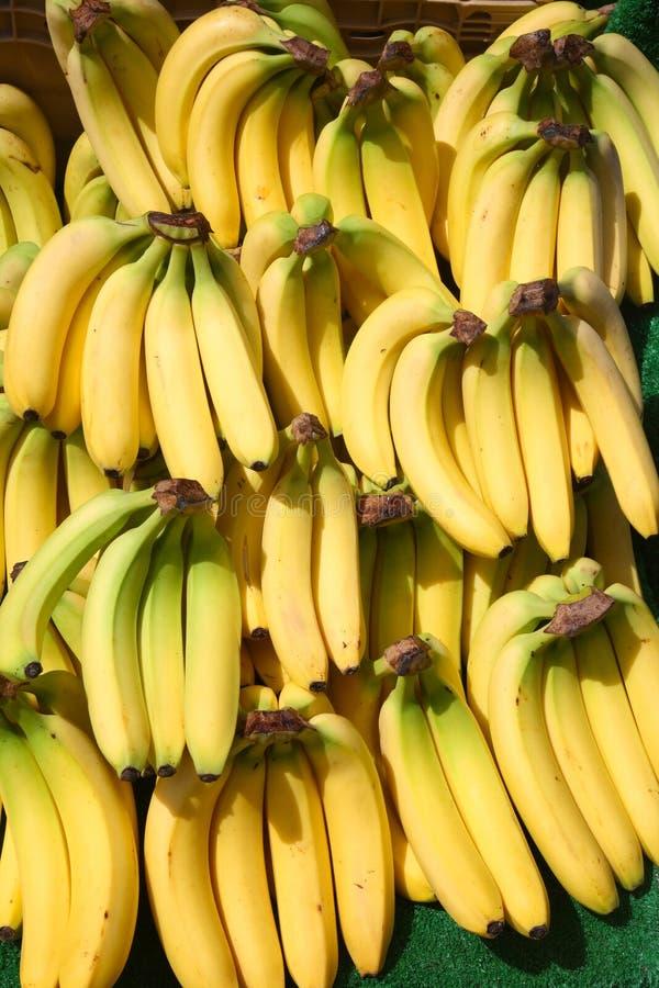 Un bon nombre de groupes de bananes. images libres de droits