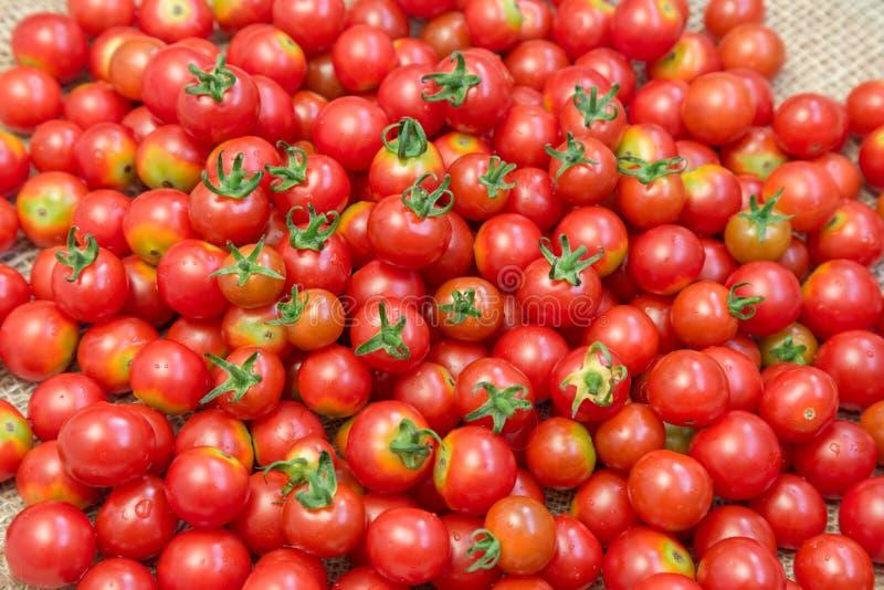 Un bon nombre de peu de tomates-cerises mûres photo stock