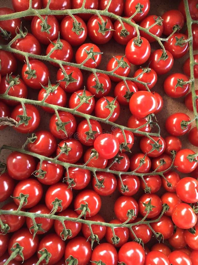 Un bon nombre de tomates-cerises image libre de droits