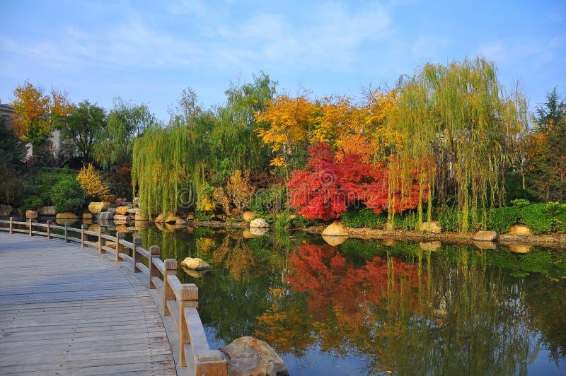 Un bord de lac coloré photo libre de droits