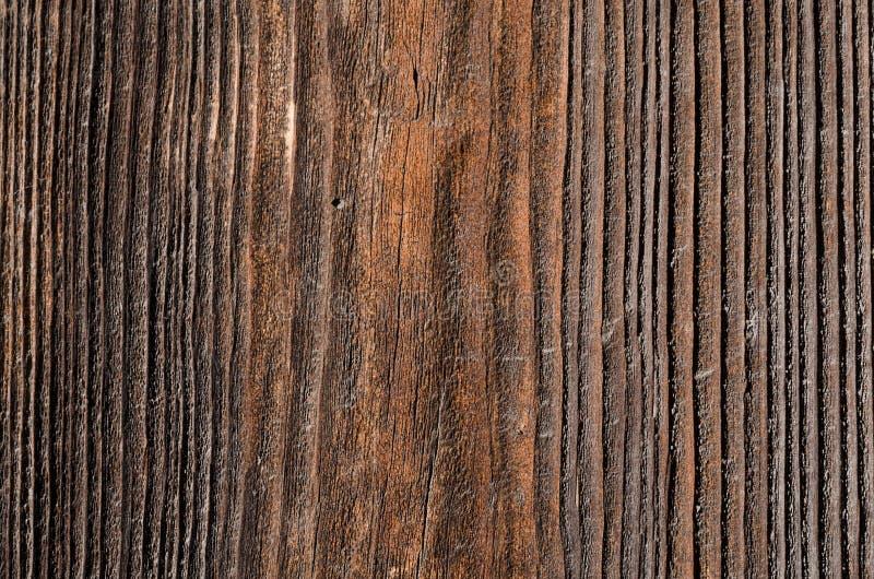 un bordo di legno antiquato con sbiadire i fungino di malattia immagini stock libere da diritti